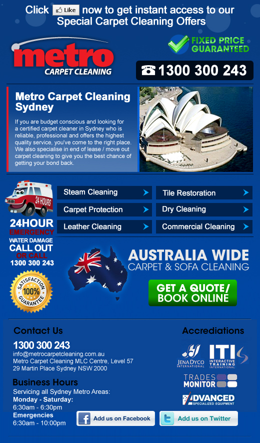 Metro Carpet Cleaning Website Creation amp Search Traffic